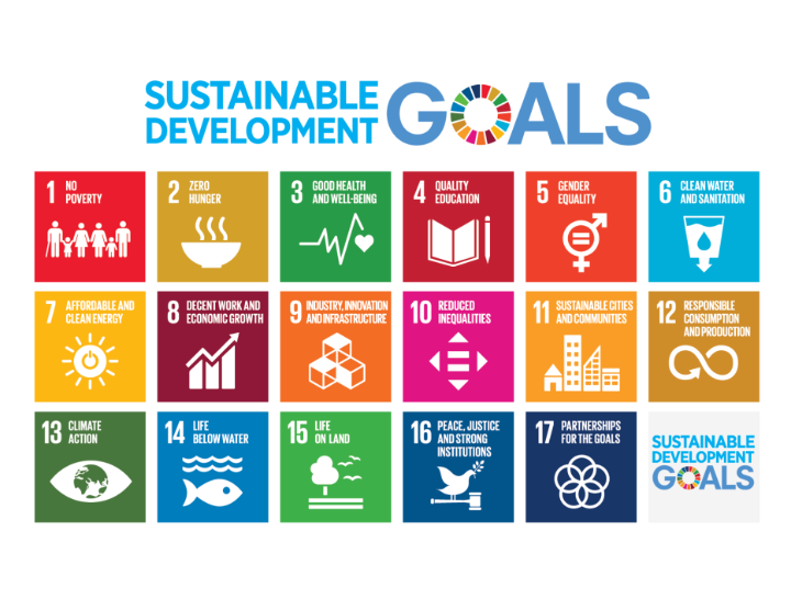 Sustainable Development Goals (c)